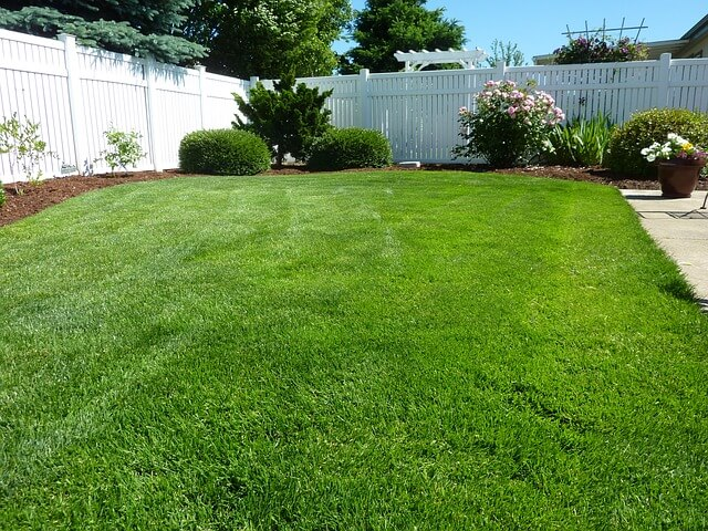 white vinyl fence surrounding lush lawn