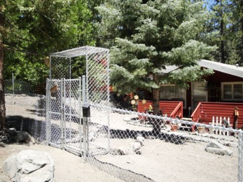 4' chain link, 4'x5' double swing gate with arbor