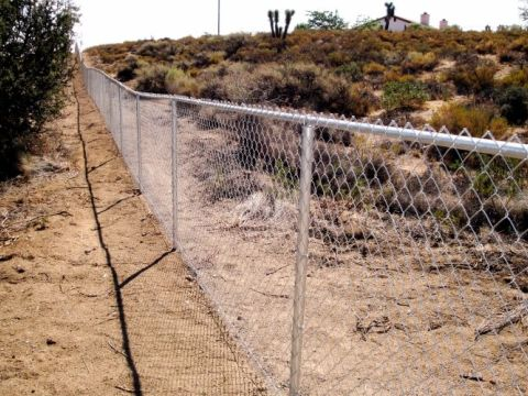 5' chain link