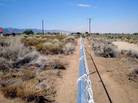 5' chain link, fence line grade