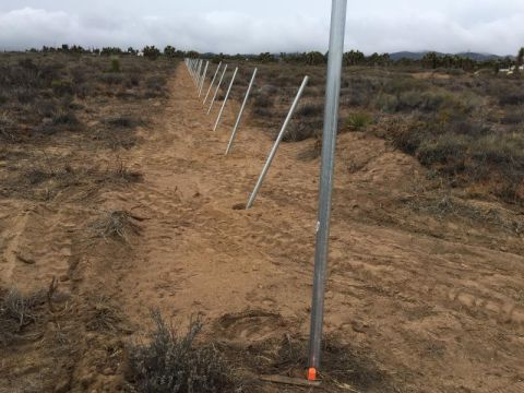 Chain Link Fence High Desert